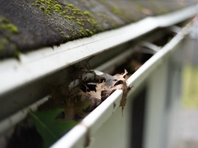 roofing companies recommend cleaning out gutters after winter