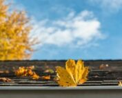 frederick md roofing company says to check for roof debris once spring arrives