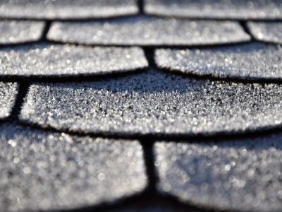 professional roof inspection in spring can help look for roof damage